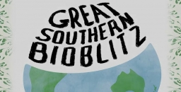 Great Southern Bioblitz: A Massive Citizen Science Project